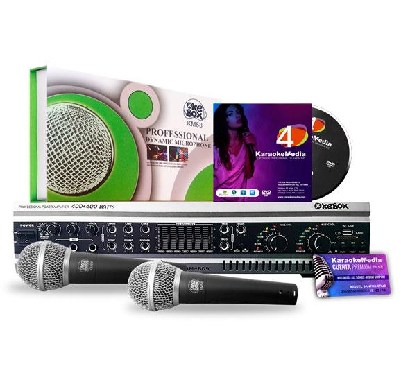 microfonos-karaoke